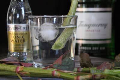 knotweed gin and tonic in a glass